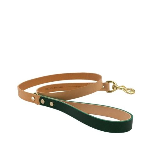 Artisan Leather Dog Lead Forest Green